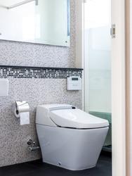 Modern interior toilet with water closet