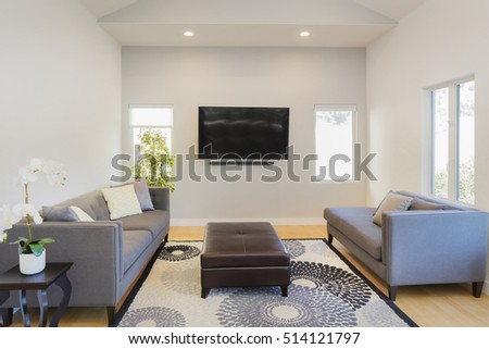 Modern interior with couch, sofa, rug, table and wall mounted TV ストックフォト ©