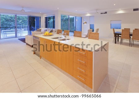 Modern kitchen and living area in stylish, modern house.