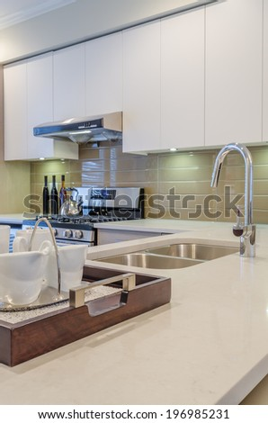 Modern kitchen in luxury house.