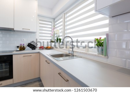 Modern kitchen interior in the house
