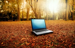 modern laptop in autumn landscape