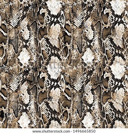Modern leopard pattern design. Animal and zebra pattern design. Print leopard pattern.