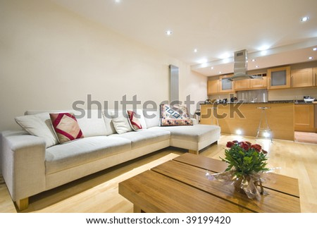 modern living room at Christmas time with large sofa, television, modern kitchen and Christmas rose