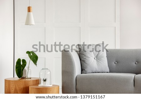 Modern living room interior with grey sofa and wooden details