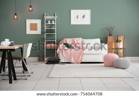 Modern living room interior with stylish sofa and carpet #756064708