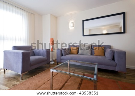 Armchairs  Living Room on Modern Living Room With Grey Sofa And Armchair Stock Photo 43558351