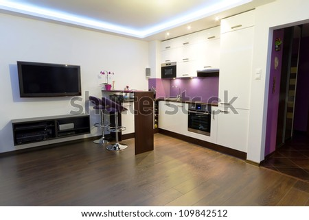 Modern living room with kitchen interior