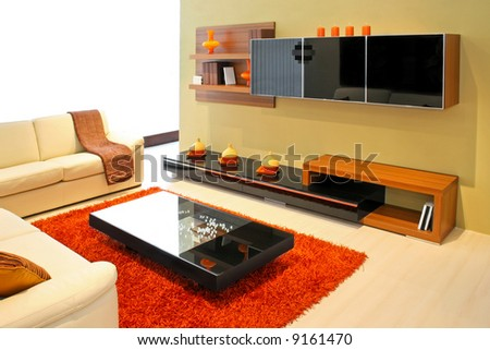 Modern living room with wooden shelves and details