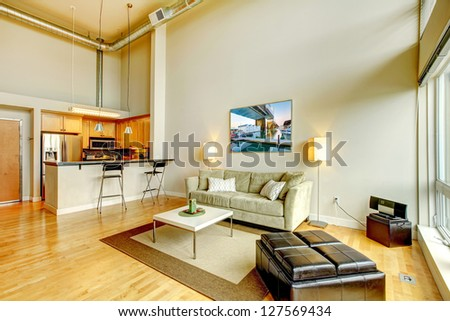 Modern loft apartment living room interior with kitchen and high ceiling.