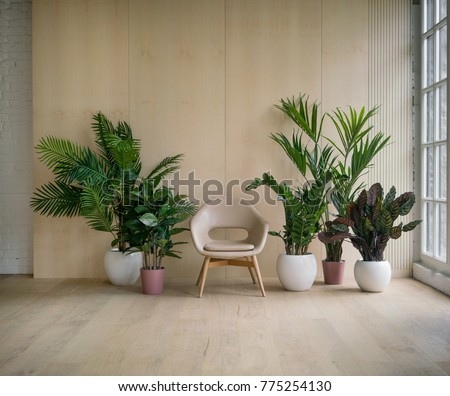 Modern loft living room with plywood wall and wooden floor, retro beige leather armchair and green tropical fern plants in pots near low sill window. Mock up interior photo simple urban jungle style