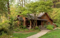 Modern Log Cabin Home in a Forest Environment