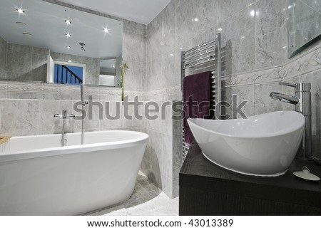 modern luxury bathroom with designer ceramic appliances