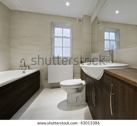 modern luxury bathroom with hard wood elements
