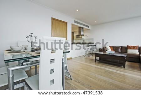 modern luxury open plan apartment with designer furniture