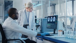 Modern Medical Research Laboratory: Two Scientists Use Computer with Screen Showing MRI Brain Scans, Specialists Discuss Innovative Technology. Advanced Scientific Lab for Medicine