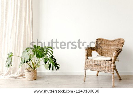 Modern minimalistic interior with an braided armchair, tropical palm plant in wicker basket. Scandinavian style.  #1249180030