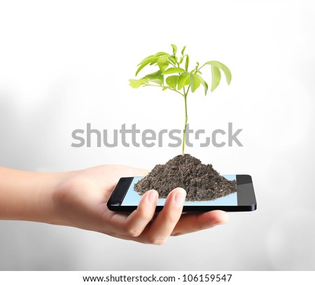 Modern mobile phone and plant in hand
