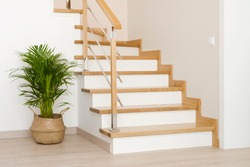Modern natural ash tree wooden stairs in new house interior