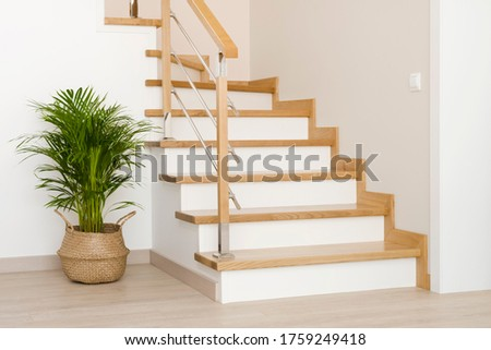 Modern natural ash tree wooden stairs in new house interior Stock fotó ©