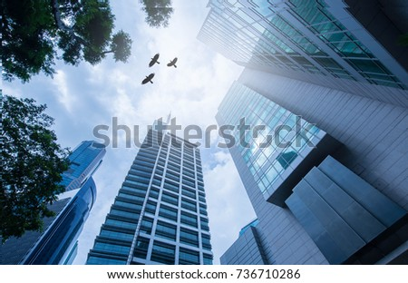 Modern office building.low angle view of skyscrapers in city of Singapore. Modern office building.low angle view of skyscrapers in city of Singapore. silhouette bird over the sky. #736710286