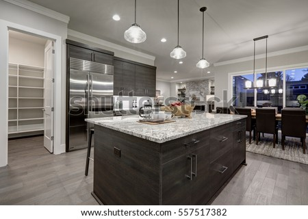 Modern open plan gray kitchen features dark gray cabinets paired with granite countertops. Open door to a pantry. Northwest, USA  #557517382