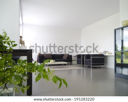 modern private living and dining room with plant in the foreground #195283220