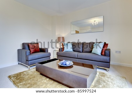 Modern reception room within small home fashionably furnished including leather chair, settee, coffee table, rug and mirror.