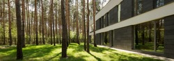 Modern rectangular detached house with a large backyard in a forested area
