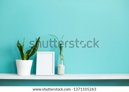 Modern room decoration with Picture frame mockup. White shelf against pastel turquoise wall with spider plant cuttings in water and snake plant.