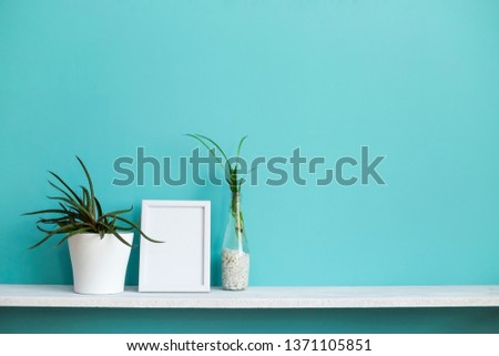 Modern room decoration with Picture frame mockup. White shelf against pastel turquoise wall with spider plant cuttings in water and succulent.