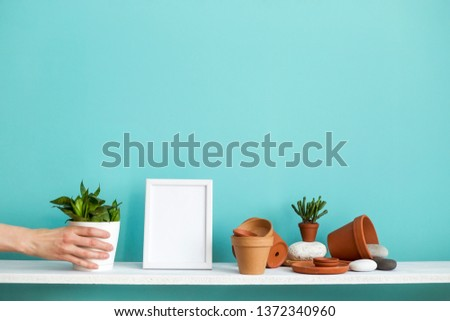 Modern room decoration with picture frame mockup. White shelf against pastel turquoise wall with pottery and succulent plant. Hand putting down potted snake plant.