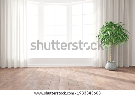 modern room with curtains and plant interior design. 3D illustration