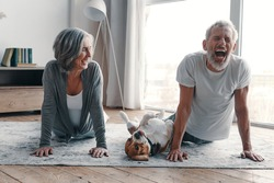 Modern senior couple in sports clothing doing yoga and smiling while spending time at home with their dog
