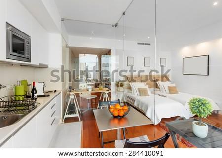 Modern single bedroom house #284410091