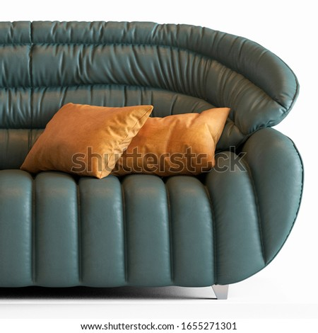 Modern sofa with pillow for living room
