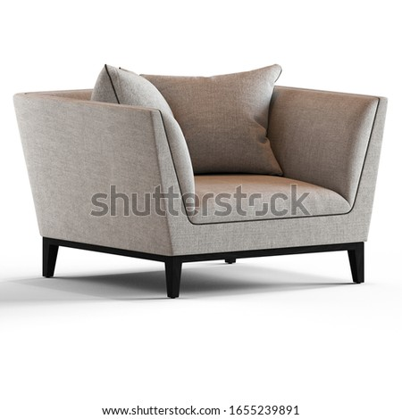 Modern sofa with pillows for living room