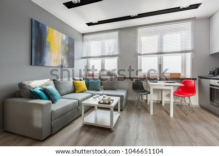 Modern studio apartment in gray with big sofa and open kitchen #1046651104