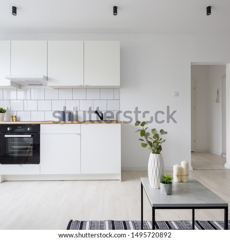 Modern studio apartment in white with functional kitchenette