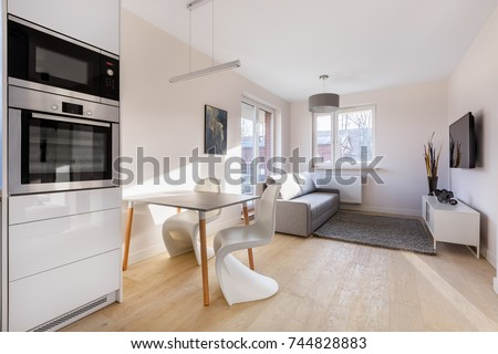 Modern studio flat with table, chairs, couch and tv #744828883