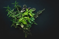 Modern styled bundle of Italian Mediterranean herbs for cooking on black background