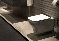 Modern toilet – closet in clean grey design. Detail of modern bathroom in minimalist style. Clean bathroom and perfectly cleaned toilet bowl.
