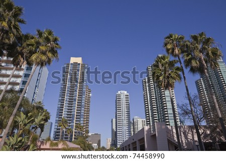 Modern towers and tall palm trees in scenic downtown San Diego California.