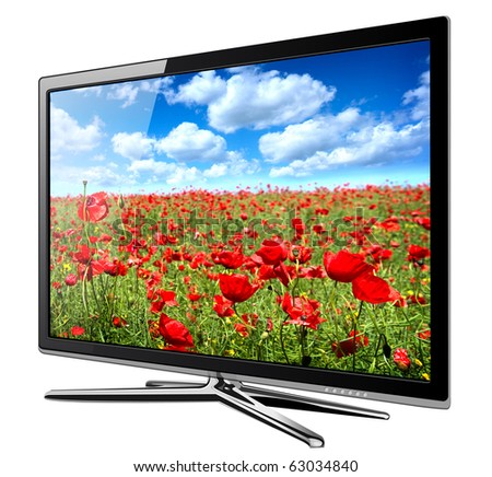 Modern TV lcd, led with wild poppy flowers on screen