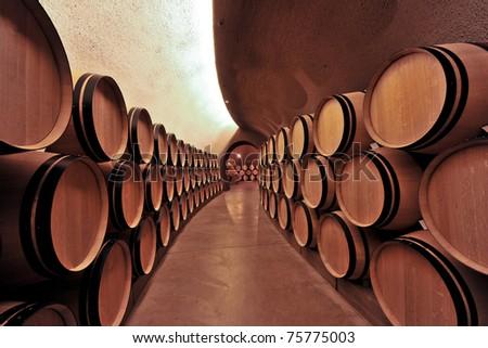 modern underground wine cellar with wooden casks aging