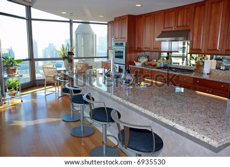Modern Upscale Kitchen in a Penthouse Condo