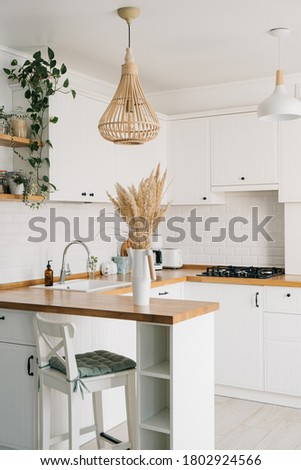 Modern white u-shaped kitchen in scandinavian style. Open shelves in the kitchen with plants and jars. Autumn decoration, selective focus on foreground. Sustainable living eco friendly kitchen