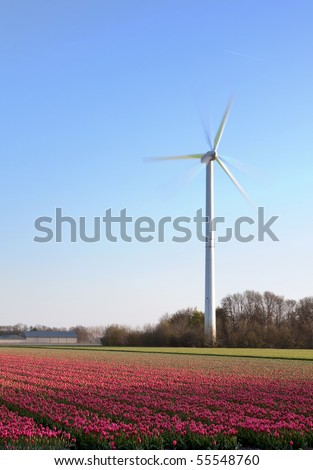 Modern windmill and springtime tulip fields in Holland
