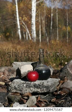 modern witchcraft rites #1209475567