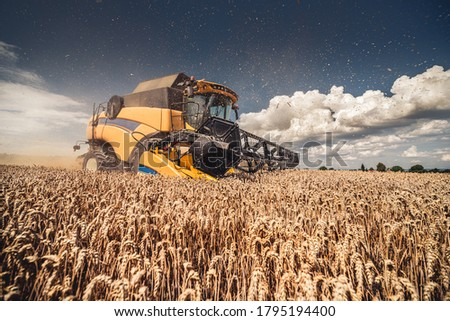 Modern yellow combine harvesting wheat during summer in Czech Republic, South Moravia, before the rain. Agricultural machine harvester working in the field using GPS for precision farming. Photo stock ©